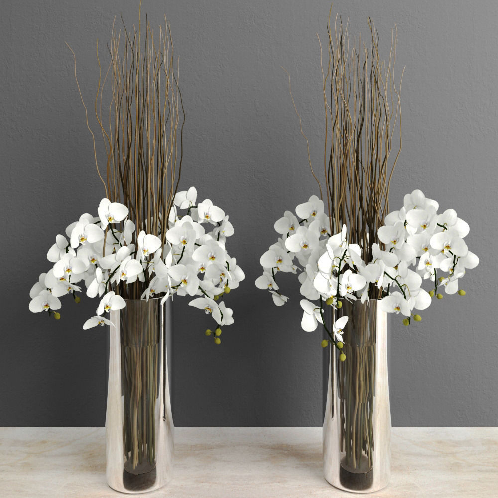 White orchids with willow branches in tall glass vase 3d model max white orchids with willow branches in tall glass vase 3d model max obj mtl 1 reviewsmspy