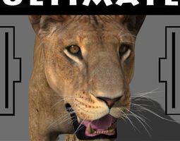 The Ultimate Lioness - 3d model animated