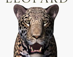 realistic leopard no fur - 3d model animated