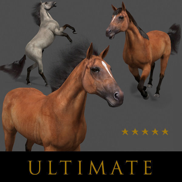 Ultimate Horse Collection - 3d model