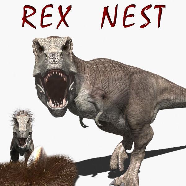Rex nest - 3d model