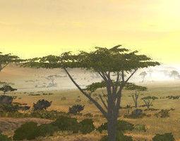 africa savanna pack v1 3d