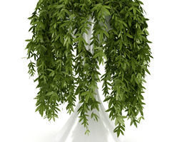 3d model climbing plant