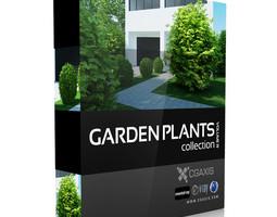 cgaxis models volume 19 garden plants 3d