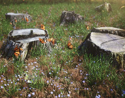 five scanned old tree stump 3d models - collection for cg