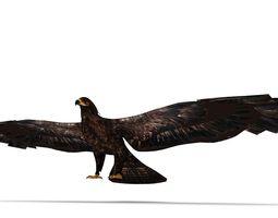 Black eagle 3D model