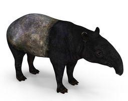 low-poly 3d asset tapir