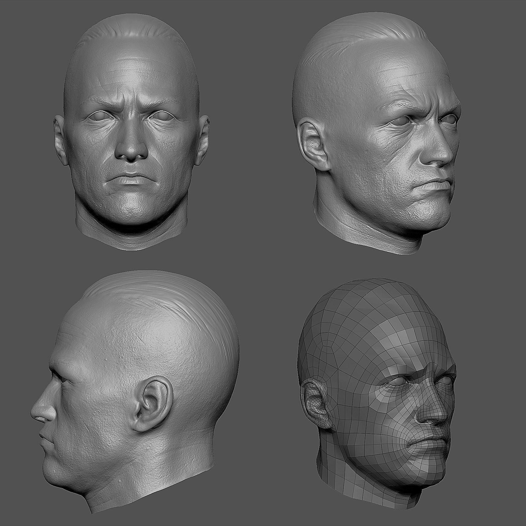 Character Head Modeling In Blender : Male head base mesh free d model obj ztl cgtrader