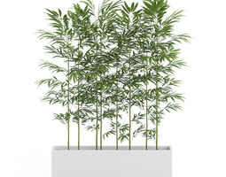 3D Bamboos in Large Rectangular Pot