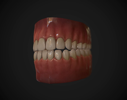 Teeth and Tongue Set 3D Model