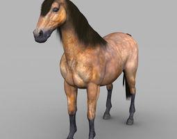 realistic muscular horse 3d asset