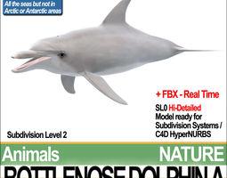 bottlenose dolphin a 3d model obj 3ds fbx c4d vue