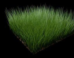 3D model Grass and Wind