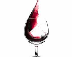 3D model Splash Wineglass 1