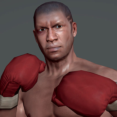Boxer v1