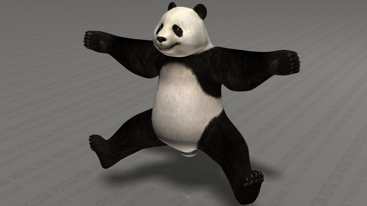 3D model Giant Panda Bear - Ailuropoda ...