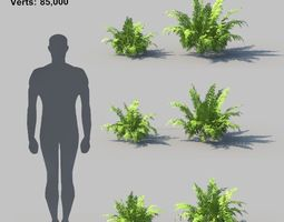 Autumn Fern A With Animation 3D model