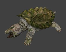 Alligator snapping turtle 3D