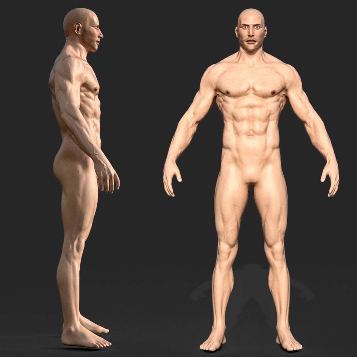 Rigged Male Muscular GAME READY 3d model