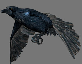 Crow with Animated 3D model