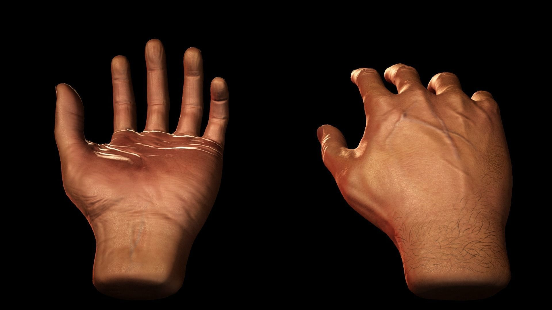 Male Hands - VR Compatible