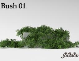 3D Bush 1
