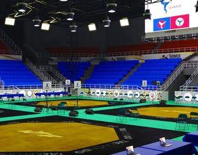 stadium - taekwondo competition field 3D