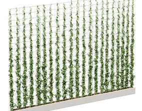 straight 3D Wall of ivy leaves