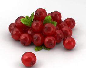 Cranberry 3D model