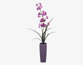 3D asset Realistic Potted Flower 004