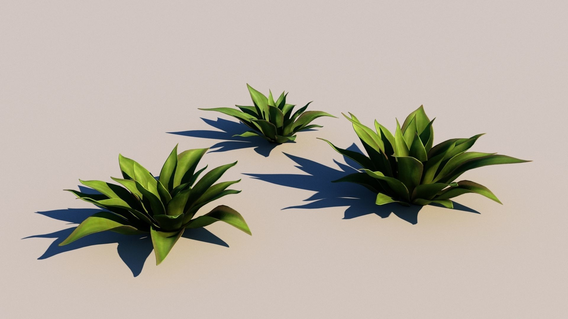 Agave Plants 3d Cgtrader
