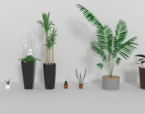 3D Indoor plants