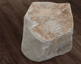 Rock with Fossil Shell 3D model
