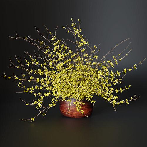 bouquet of yellow flowers forsythia 3d model max obj mtl fbx blend 1