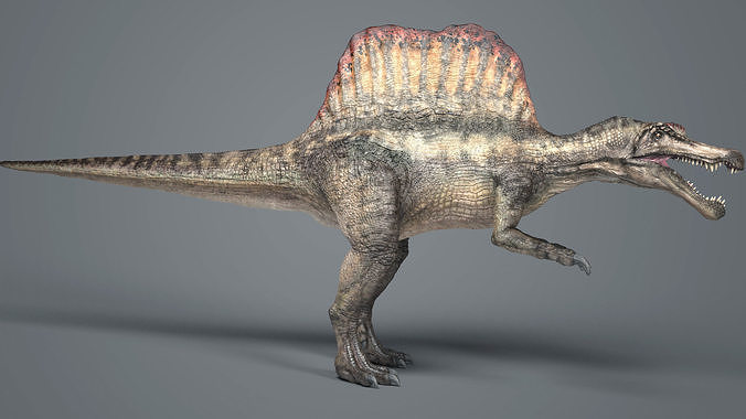 spinosaurus-rig 3d model low-poly rigged max fbx 1