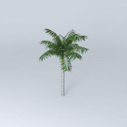 tree palm 3d model max obj 3ds fbx stl dae 1