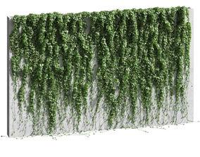 Ivy for the fence v2 3D