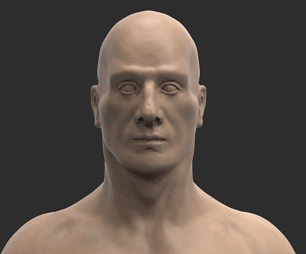 male anatomy 3d model obj mtl fbx ztl 1