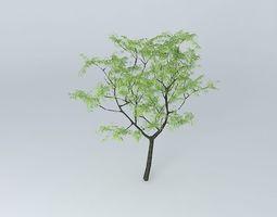 3D Tree Tree 3D tree