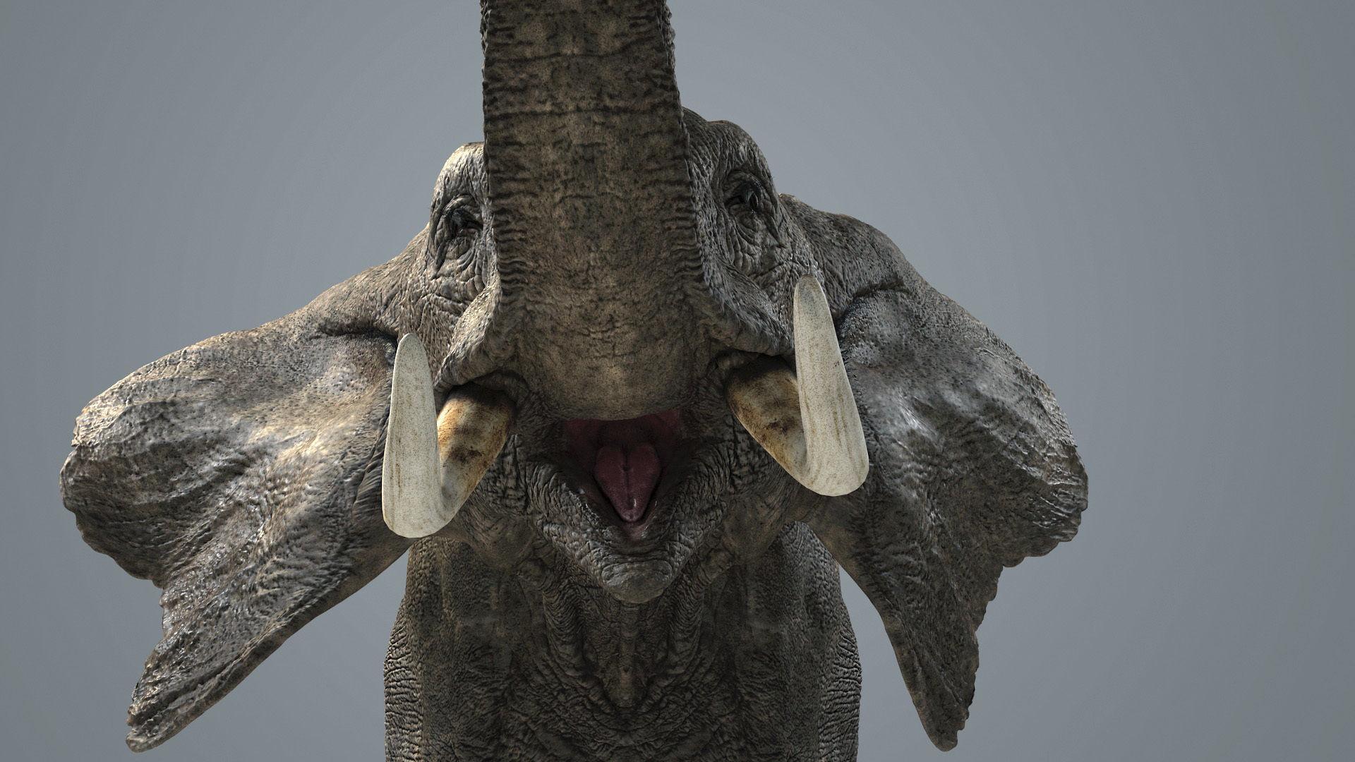 Elephant-Animated-Maya