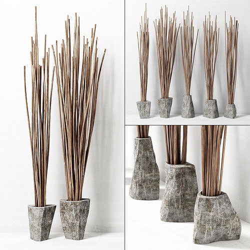 Branches In The Vase Decor 3d Cgtrader