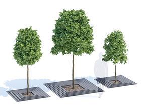 3D model Arboris
