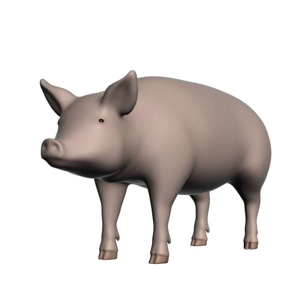 Realistic Pig 001