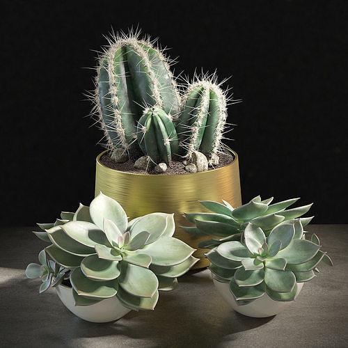 set of plants 01 3d model max obj mtl fbx 1