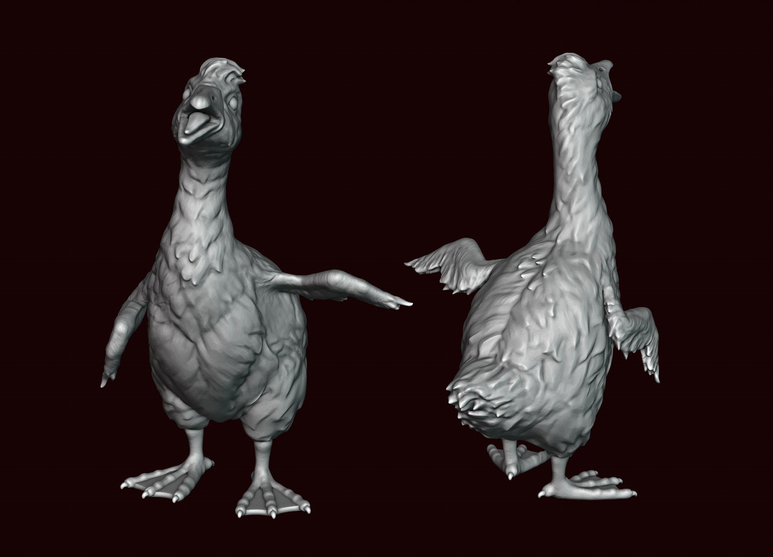 Goose Baby goose Gosling