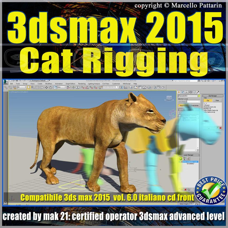 Video Corso 3ds max 2015 Cat Rigging volume 6 Italiano cd front