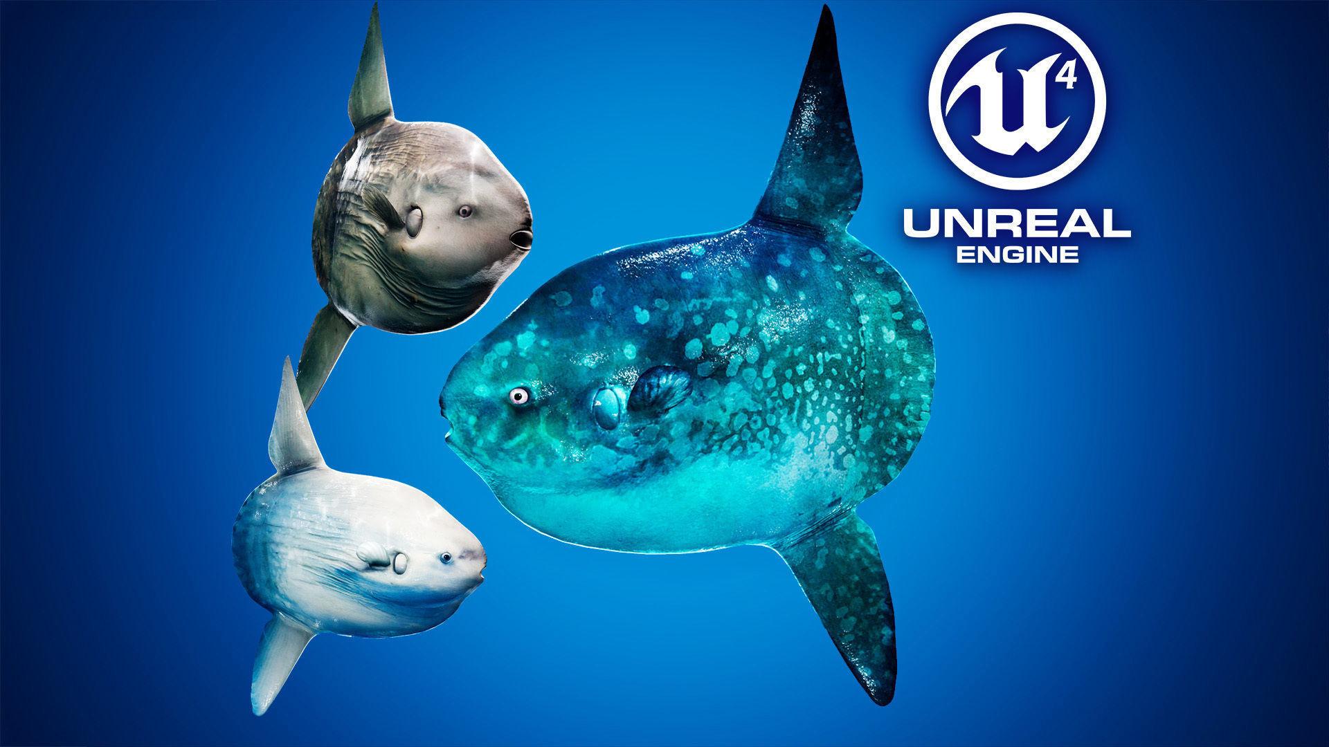 Ocean Sunfish Pack - UE4