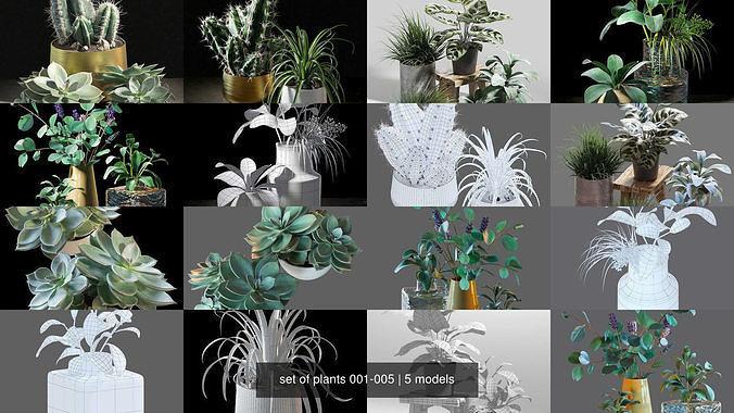 set of plants 001-005 3d model max obj mtl fbx 1