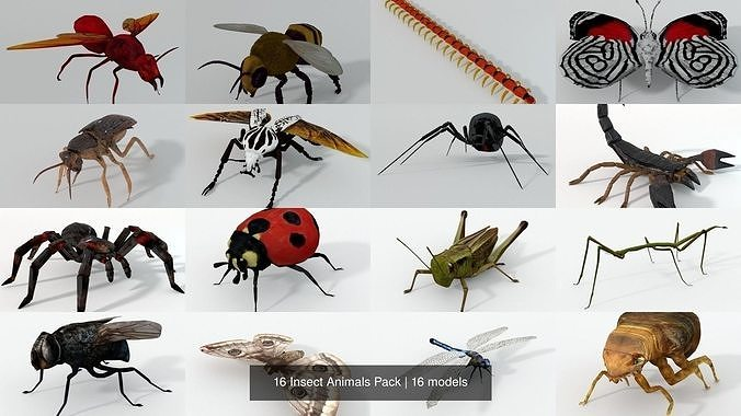 16 insect animals pack 3d model obj mtl 3ds fbx stl blend dae 1