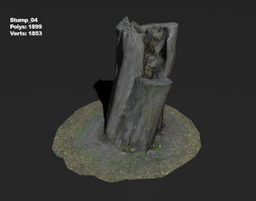 3D model Photoscanned stump 04